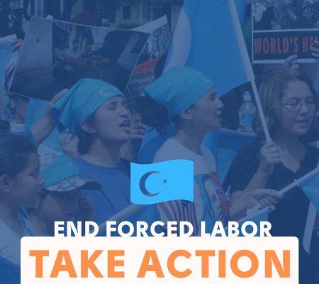 Uyghur Action Instagram